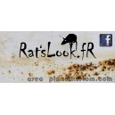 Sticker ratslook.fr facebook bleu patina rust rats look fr 4